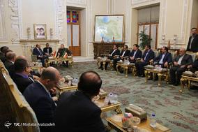 دیدار رئیس جمهور عراق با رئیس مجلس شورای اسلامی