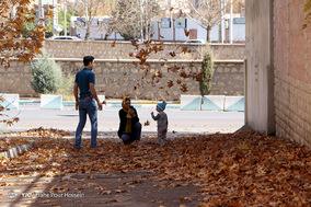 طبیعت پاییزی شیراز