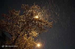 شب برفی مشهد