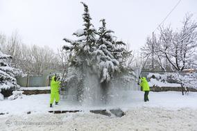 بارش سنگین برف در همدان