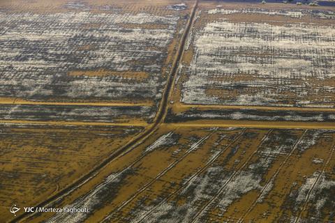 تصاویر هوایی سوسنگرد سیل زده