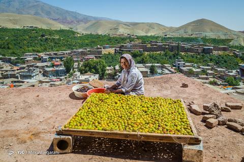 ایرانِ ما؛ شهر خَرو ... شهر بامهای طلایی، پایتخت آلوی ایران و ماسوله خراسان