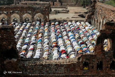 عید سعید فطر در هند