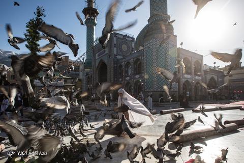 اقامه نماز عیدسعیدفطر در امامزاده صالح(ع) تهران