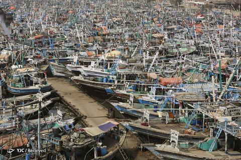 قایق های ماهیگیری پاکستان در بندر کراچی