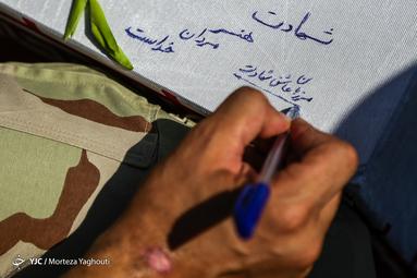 بازگشت ۴۴ پرستوی مهاجر به آغوش وطن