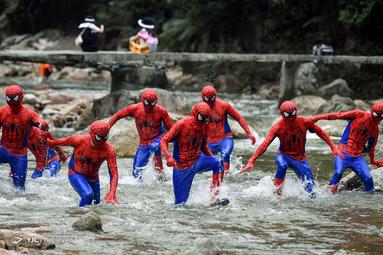 شرکت کنندگان در لباس مرد عنکبوتی در یک رویداد در پارک جنگلی ملی استان هونان، چین