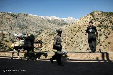 علی عدناک (سمت چپ) از مریوان مایحتاج مردم ژِیوار را میخرد و با الاغ خود در سطح روستا میفروشد