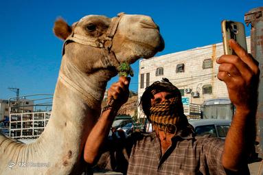 عید قربان در غزه