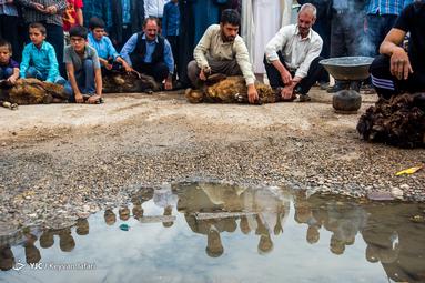 عید سعید قربان در روستای غلام ویس شهرستان خدابنده استان زنجان