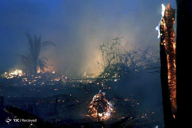 آتش سوزی جنگل آمازون