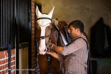 مسابقات پرش با اسب قهرمانی کشور