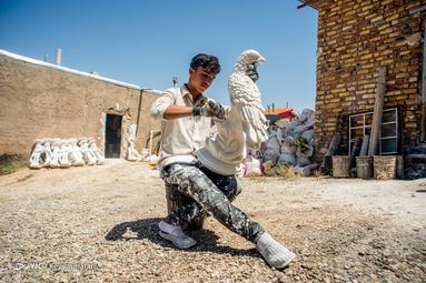 روستای قزل بلاغ زنجان  معروف به روستای هنرمندان مجسمه ساز یکی از تولید کننده های اصلی مجسمه در کشور است