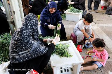 آش نذری ۲۸ صفر در شیراز