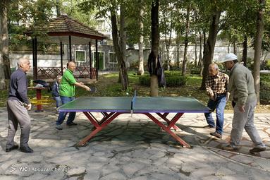 بازی کردن پینگ پنگ در پارک