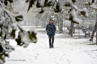 اولین برف پاییزی در تهران
