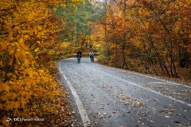 جنگل گلستان، منطقهٔ حفاظت شدهای در شرق استان گلستان و غرب استان خراسان شمالی