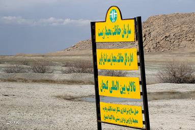 تالاب بین المللی کمجان_شیراز