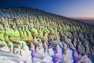 هیولاهای برفی در ژاپن