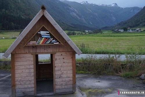 شهری که تعداد کتابهایش بیشتر از ساکنان آن است! + تصاویر