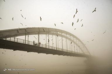 اهواز در مه