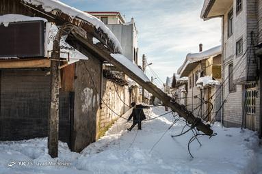 خسارات وارده پس از بارش برف در رشت