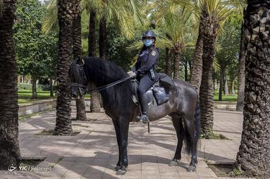 هلنا گونزالو سانچز یک مأمور پلیس اسب سوار در والنسیای اسپانیاست. او معتقد است که کارش وظیفه است و به آن افتخار می کند