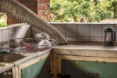 Gunther De Bruyne / BigPicture مسابقه عکاسی جهان طبیعی