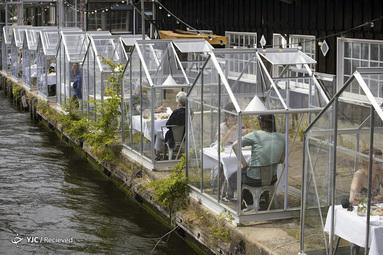 در پی شیوع ویروس کرونا استفاده از خانه های شیشه ای کوچک در رستوران Mediamatic در آمستردام هلند