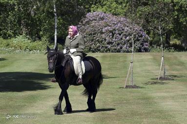 ملکه بریتانیا، الیزابت دوم در پارک خانگی در انگلستان