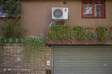 گل و گیاه در فرهنگ بصری ایرانیان نقش ویژه ای دارد. علاوه بر چشم نوازی باعث حظ روح نیز می شود