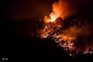 آتش سوزی در California