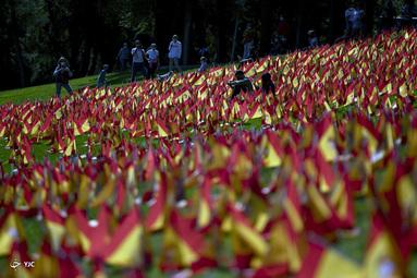 مردم در کنار پرچم های اسپانیا در پارک روما