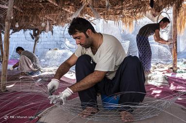 گرگور بافی - بوشهر