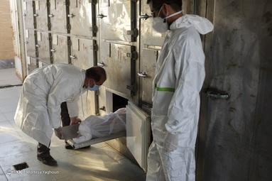 جهادگران بیمارستانهای خوزستان